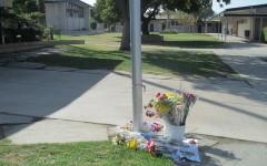 In Memoriam: Chase Varney