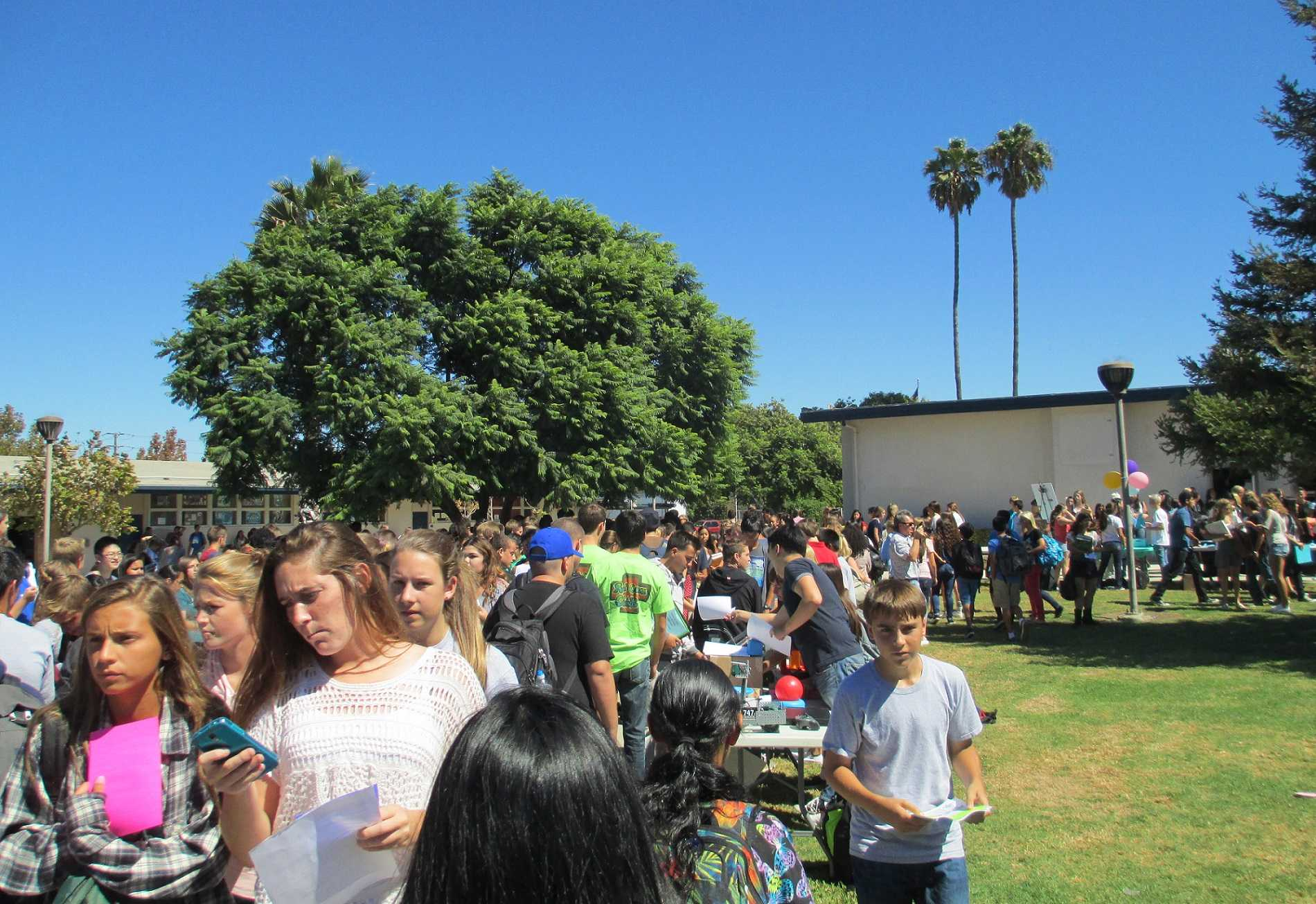 Students gather in hordes to