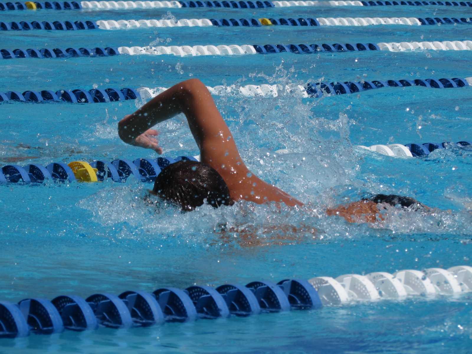 swim19