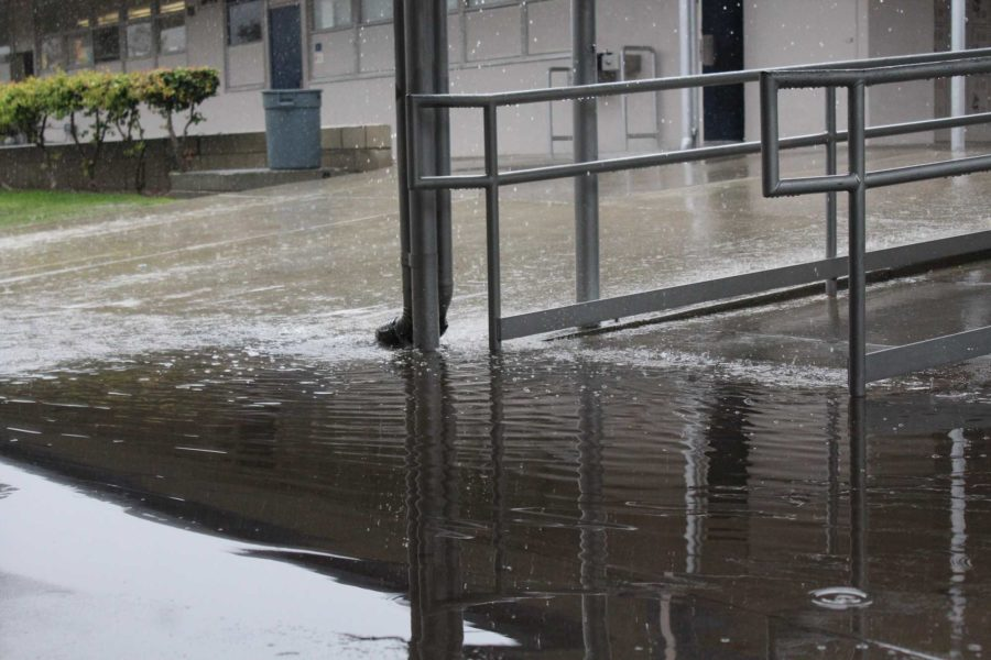 Rain impacts Camarillo