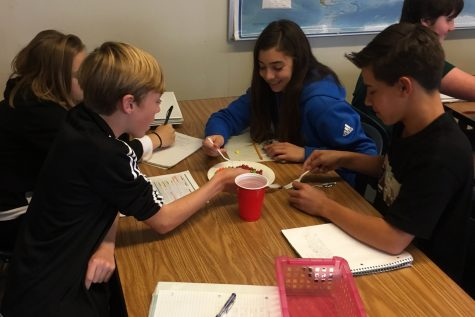 Freshmen students (from left to right) Tabitha Ebright, Zachary Kwast, Jacqueline Pizza, and Bryce Blau using skittles for an activity about ethnicity in AP Human Geography.