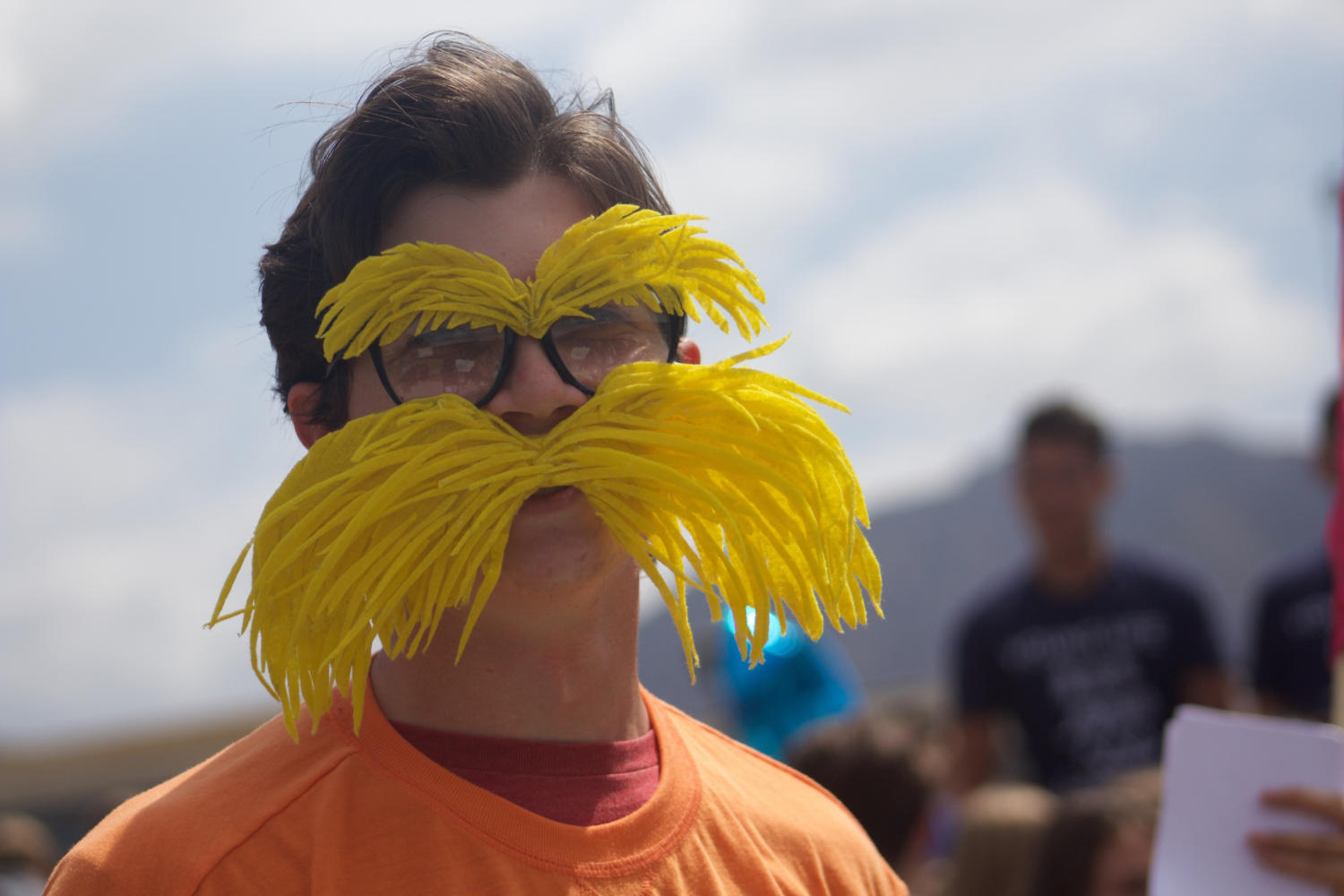 Eric Burschinger, junior, dresses as The Lorax to promote Naturally Green.