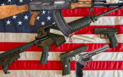 Why Gun Control is Not the Solution