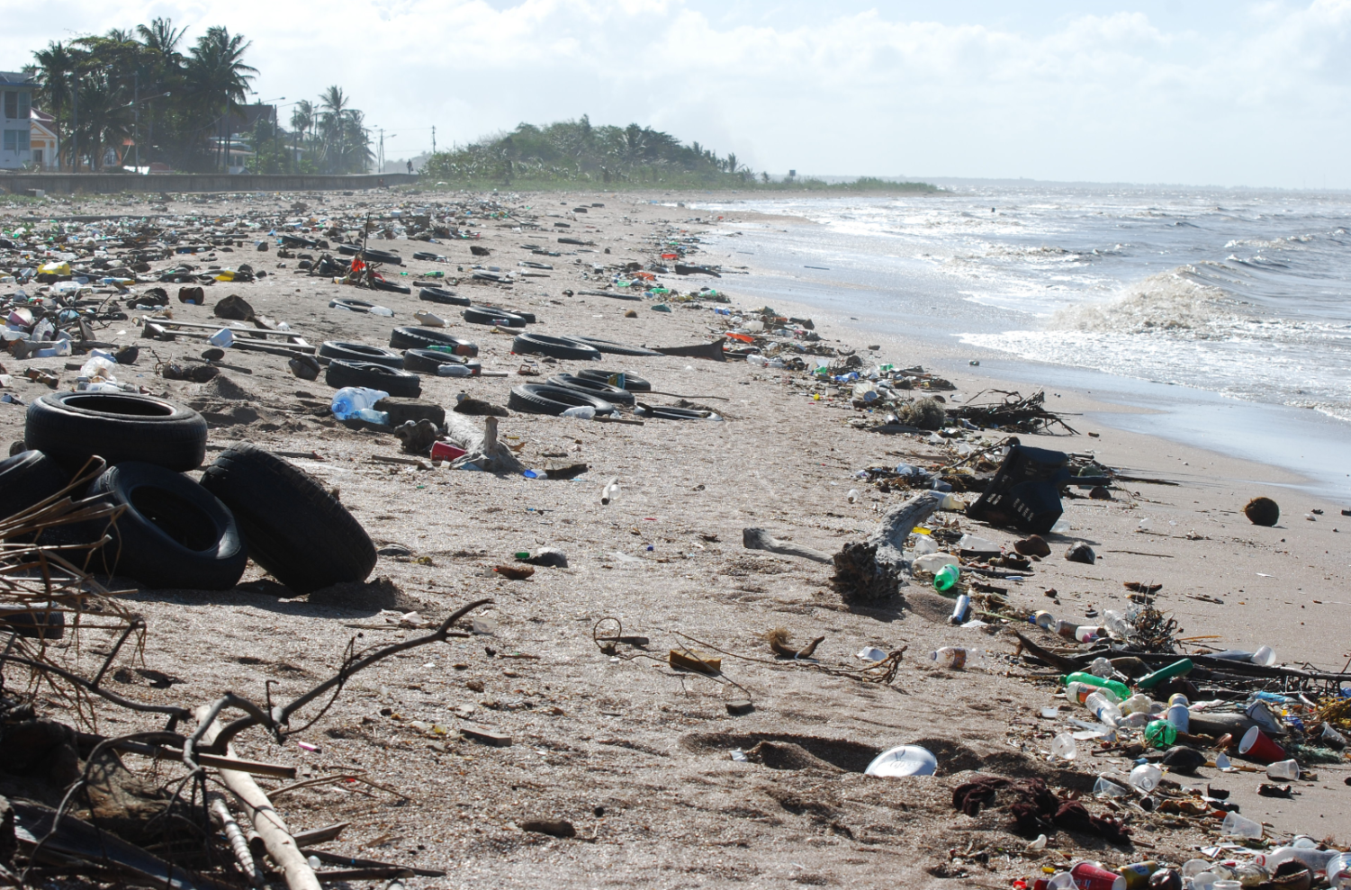 Showing the litter problem on the coast of Guyana.