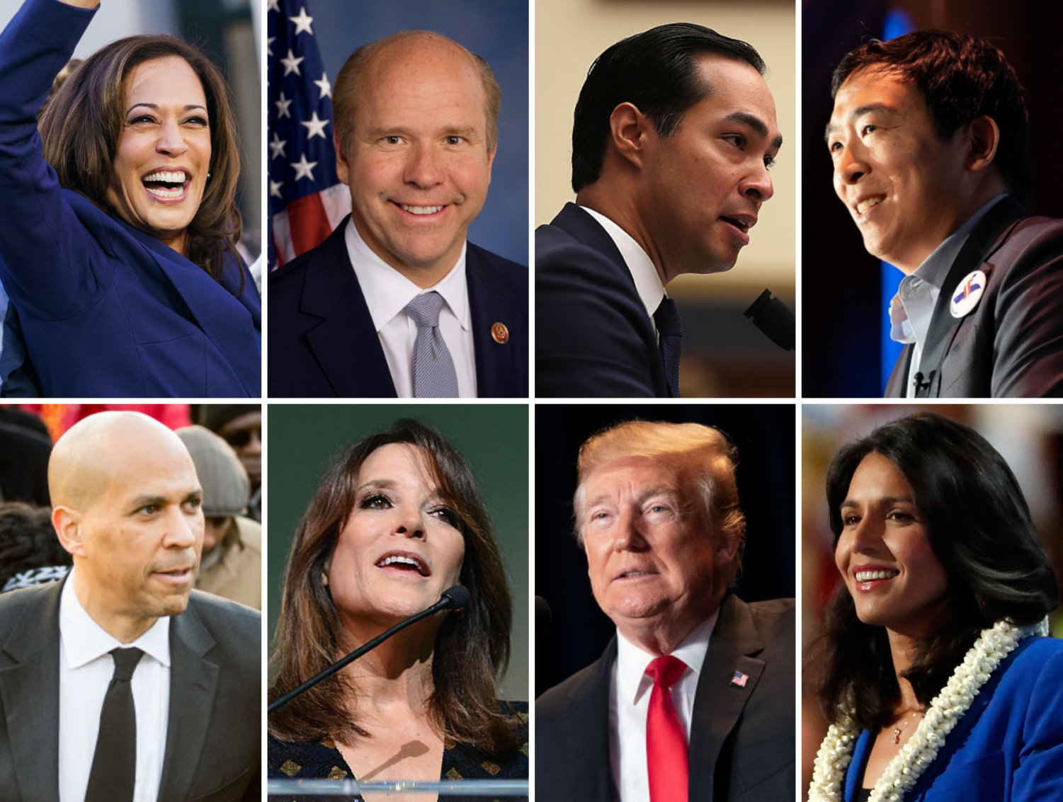 These are just some of the candidates for the 2019-2020 presidential election. From top left to bottom right: Kamala Harris, John Delaney, Julian Castro, Andrew Yang, Cory Booker, Marianne Williamson, Donald Trump, and Tulsi Gabbard.