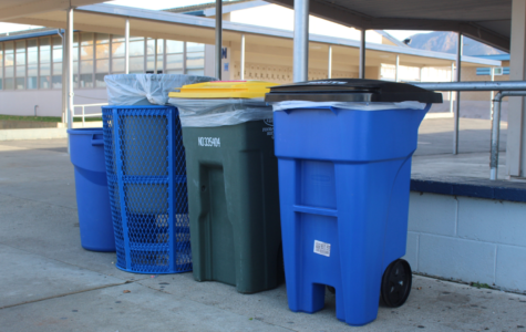Naturally Green's three-bin system is working to reduce wastefulness at Cam High.