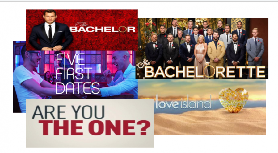 Are Dating Shows Stupid?