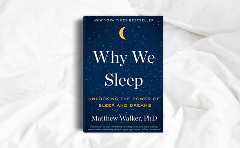 Why+We+Sleep+%282017%29%3A+Book+Review
