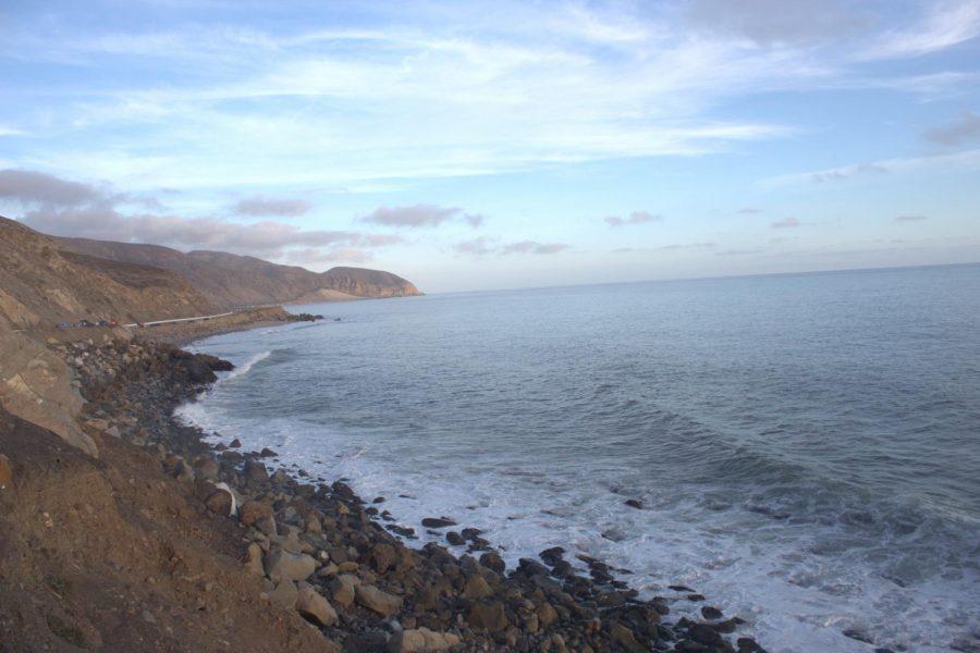 Massive Oil Spill Hurts Wildlife and Citizens in Huntington Beach, California